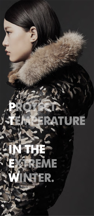 Protect Temperature in the extreme winter