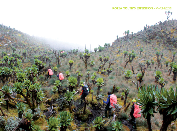 korea youth's expedition - rwenzori